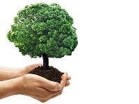 """Immagine associata al documento: Scheda Titolo VI  - """"Aiuti per la tutela dell'ambiente"""""""