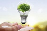 Immagine associata al documento: Borraccino, Efficientamento Energetico via libera al finanziamento di altri interventi in tutta la Puglia
