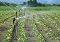 Immagine associata al documento: Il riuso delle acque in agricoltura in Puglia